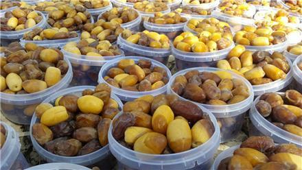 فروش خرما برحی نخل اروند